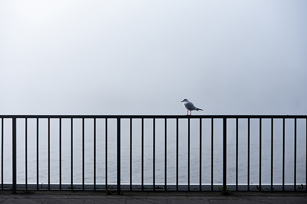 Minimalism - Hamburg Hafen
